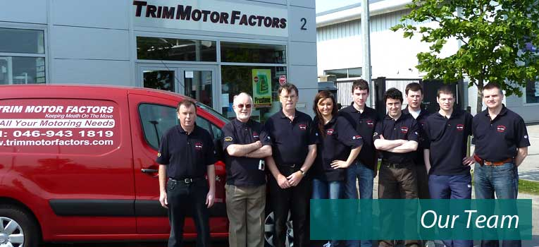 Trim Motor Factors Team