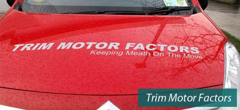 Trim Motor Factors